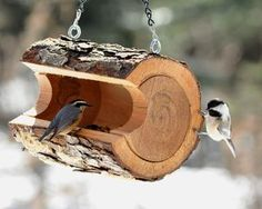 Bird feeder Logs Ideas, Garden Ideas With Tree Stumps, Wood Log Ideas, Log Wood Projects, Diy Home Projects Easy, Cabin Ideas, Dremal Projects, Ideas Prácticas, Outdoor Projects