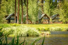 For a beautiful staycation, book one of these quaint cottages at Metolius River Resort in Camp Sherman, Oregon. They're right on the river! Vacation Cabin Rentals, Family Vacation Destinations, Best Vacations, Amazing Destinations, Vacation Spots, Vacation Ideas, Sequoia National Park, National Parks, Florida Camping