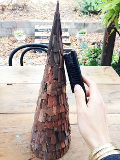 Eucalyptus Bark trees - DIY