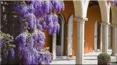 szép házak mediterrán villa - Luxuslakások és házak Villa, Mauritius, Glass Vase, Plants, Diy, Home Decor, Decoration Home, Bricolage, Room Decor