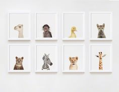 Wolf Pup Little Darling - The Animal Print Shop by Sharon Montrose