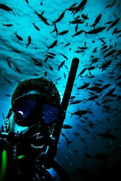 Help us to develop diving school and resort on amazing Koh Phangan, Thailand - workaway.info Scuba Diving Thailand, Scuba Diving Certification, Diving School, Koh Phangan, Northern Lights, Vacation, Amazing, Training, Travel