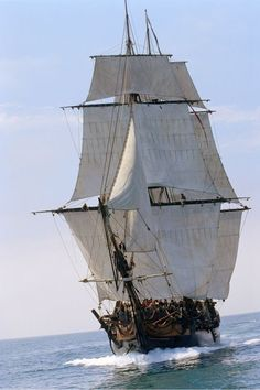 Master and Commander - Bis ans Ende der Welt Master And Commander, Old Sailing Ships, Sea Of Thieves, Ship Drawing, Ship Paintings, Cool Boats, The Far Side, Sail Away, Tall Ships