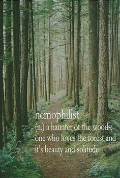 Nemophilist (n) a haunter of the woods; one who loves the forest and the beauty of its solitude.