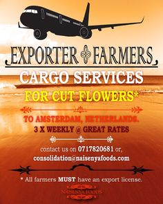 #Farmers #Exporters #Growers and #Agrigators we have reviewed our prices to $1.95 per #Kilo. Call us on 0717820681 to book your space. #Happy #Exporting #Nairobi #Kenya #Schiphol #Amsterdam #Netherlands #Holland #Foreign #Exchange #JKIA #NaisenyaFoods