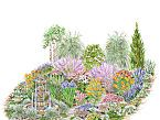 Drought-Tolerant Garden Plan