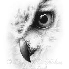 Animal Sketches, Animal Drawings, Art Drawings, Tattoo Aigle, Eagle Sketch, Buho Tattoo, Eagle Drawing, Pop Art Wallpaper, Desenho Tattoo