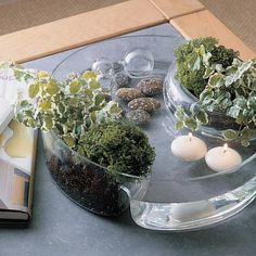 Use a divided tray like a chip & dip or sectioned crudites plate for natural elements display--rocks, plants, moss, floating candles in water, shells, geodes, arrowheads, ...etc.