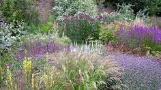 hyde hall gravel garden