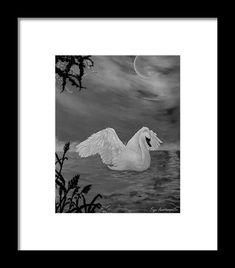 Swan Framed Print featuring the drawing Night Bath by Faye Anastasopoulou Bison Pictures, Hope Symbol, Ocean Scenes, Native American History, Framed Art Prints, Swan, Fine Art America, Original Art, Bath