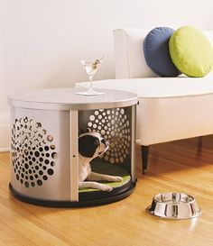 cool-dog-house-under-table