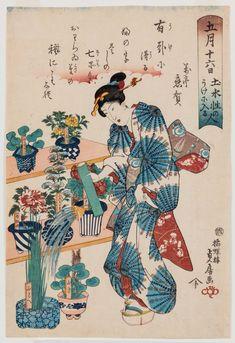 The Omiya Bonsai Art Museum, Saitama Japanese Drawings, Japanese Prints, Oriental, Geisha, Bonsai Art, Japanese Patterns, Art Academy, Japan Art, Pretty Art