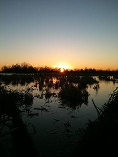 beauty of duck hunting.... so true