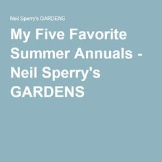 My Five Favorite Summer Annuals Neil Sperry S Gardens Sperrys