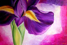 Iris Collage by Tiffany Budd