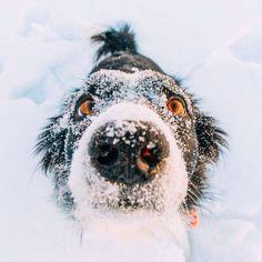 Cold? NNNNNooooooooo