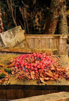 Natuurkieker: Creatief met malusappeltjes