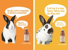Another quirky smoothy advert from Innocent. Their whimsical tone of voice is a consistent feature of the brand.