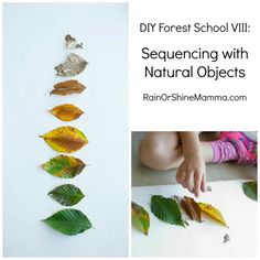 DIY Forest School VI