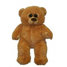Cuddly Droopy Eyed Recordable Bear