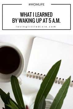 Are you a night owl or an early riser? Find out what I learned by waking up at 5 a.m.