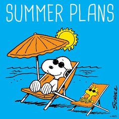 Snoopy and Woodstock at the Beach Wearing Sunglasses and Lying on Chaise Lounge Chairs Under Sun Umbrella With Caption Saying Summer Plans Mehr Peanuts Cartoon, Peanuts Snoopy, Snoopy Hug, Snoopy Comics, Snoopy Und Woodstock, Snoopy Pictures, Snoopy Quotes, Humor Quotes, Ecards Humor
