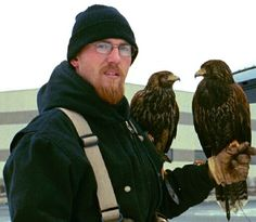 Ken Jennings and Harris's Hawks