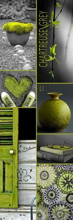 Chartreuse and grey