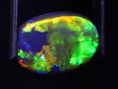 2.89 ct black opal 14x9.5x3mm - Black Opal Direct