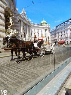 Carrozza cavalli - Wien