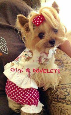 Gigi  is so cute.