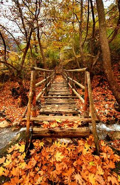 Wooden bridge at the entrance of the remote village of Athamania, Trikala, Greece.