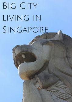Big City living in Singapore