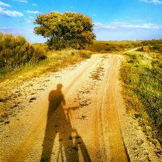 Disfruta del camino. Vive Country Roads, Drive Way