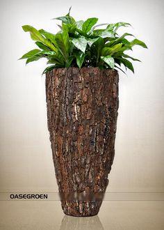 Container Flowers, Container Plants, Plant Containers, Indoor Garden, Indoor Plants, Large Plant Pots, Tall Floor Vases, Fleurs Diy, Herb Garden Design