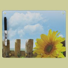 Sunflower Nature Beauty