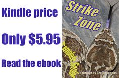 """I am experimenting with FACEBOOK ads. Only a small photo and 90 characters of copy are allowed. How does this look?    """"Margaret escapes spies, super-weapons, & snakes to find love: Read STRIKE ZONE, a thriller""""    http://www.amazon.com/STRIKE-ZONE-Complete-Series-ebook/dp/B00AXMYVSC"""