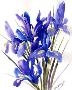 Irises original watercolor painting 14 X 11 in by ORIGINALONLY, $56.00