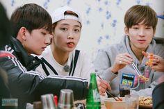 One Fine Day Castaway Boys' Woozi, Wonwoo, Jeonghan, Seventeen One Fine Day, Korean Wave, Pledis 17, Pledis Entertainment, Seungkwan, Vernon