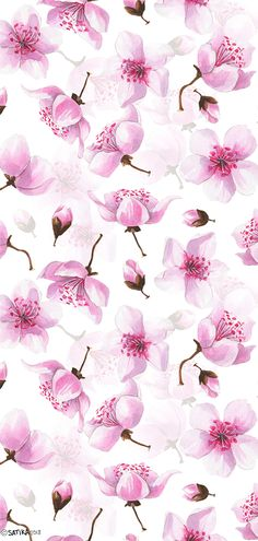 Watercolor pink pattern with Sakura tree bloom in Japan. Following the link you will find beautiful sakura blossoms; wreathes; bouquets; arrangements; frames; seamless patterns and many other necessary things for your easy great design. You can use pre-made cards; compositions and elements for your unique DIY art. #khanami #sakura #cherryblossoms #cherry #watercolorpainting #satikaart