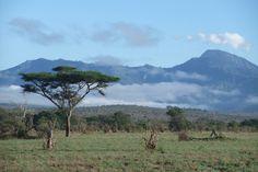 Impressionen aus Kenia