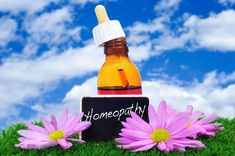 Tired of using anti-acne creams to control your breakouts? Try homeopathy instead. These remedies will prevent flare-ups and control the symptoms. Acne Treatment, Complementary Alternative Medicine, Acne Cream, Remedies, Health, Healthy Life, Flowers, Health Care, Salud
