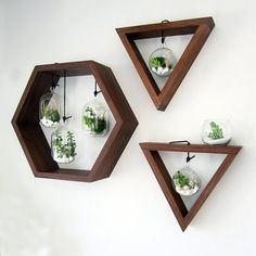 Jardín de terrario colgante hexágono nogal por MastersonMadeCA Garden terrarium pendant hexagon walnut by MastersonMadeCA - Bathroom Glass Wall, Glass Walls, Bathroom Plants, Sofa Bar, House Of Beauty, Tree Wall Decor, Metal Tree Wall Art, Diy Home Decor Projects, Wood Projects
