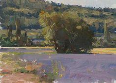 Morning lavender Julian Merrow-Smith 7-9-17