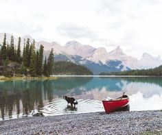 """findmomo: """"Can you look back for a sec and remember your favourite moment of the summer? Can you breathe right now and live through it even as images in your head? Mine's a toss up between this canoe..."""