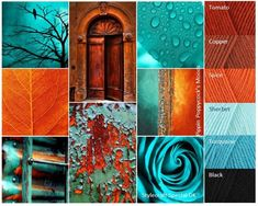 Welcome to my moods were I translate my current mood into color and inspiration for that next big project. I hope you too find inspiration for your next project. There are over 100 to choose from. Yarn Color Combinations, Colour Schemes, Color Patterns, Motif Oriental, Illustration Photo, Color Collage, Terracota, Orange And Turquoise, Teal