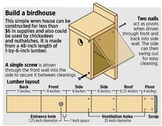 """Birdhouse made from 1 48"""" length of 1x6 - easy enough for the boys to do (with supervision) and then paint!!!"""