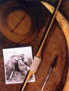 Image of a Photo of Howard Hill next to an elephant shot in Africa. Next to the photo is the elephants tusk, the arrow used to shoot it, Howard's hat, and a longbow.