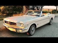 For Sale: 1965 Ford Mustang in Charleston, South Carolina Ford Mustang Car, Ford Mustang For Sale, Ford Gt, Vintage Mustang, Huracan Lamborghini, Koenigsegg, Ferrari 458, Retro Cars, Sweet Cars