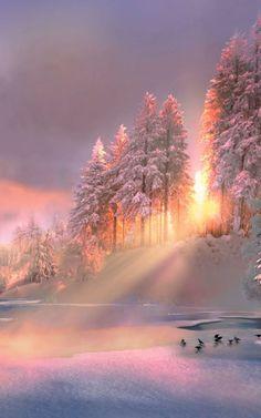 Golden glow over the winter landscape! Beautiful Winter Scenes, Beautiful Places, Beautiful Pictures, Beautiful Moments, Beautiful Scenery, Beautiful People, Snow Scenes, Winter Beauty, Winter Landscape
